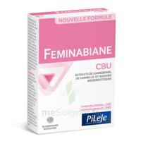 Pileje Feminabiane Cbu 30 Comprimés Bicouches à BAR-SUR-SEINE