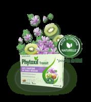 Phytoxil Transit Comprimés B/20 à BAR-SUR-SEINE