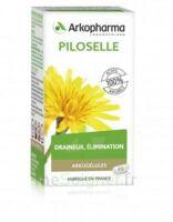 Arkogélules Piloselle Gélules Fl/45 à BAR-SUR-SEINE