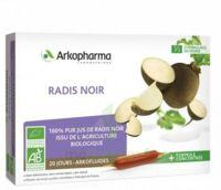 Arkofluide Bio Ultraextract Radis Noir Solution Buvable 20 Ampoules/10ml à BAR-SUR-SEINE