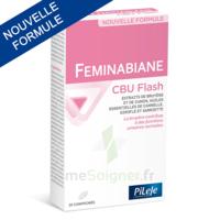Pileje Feminabiane Cbu Flash - Nouvelle Formule 20 Comprimés à BAR-SUR-SEINE