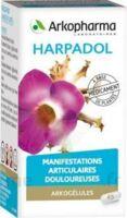 Arkogelules Harpagophyton Gélules Fl/150 à BAR-SUR-SEINE