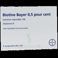 Biotine Bayer 0,5 Pour Cent, Solution Injectable I.m. à BAR-SUR-SEINE