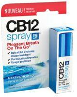 Cb 12 Spray Haleine Fraîche 15ml à BAR-SUR-SEINE
