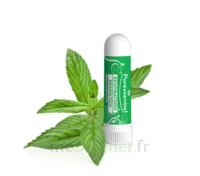 Puressentiel Respiratoire Inhaleur Respiratoire Aux 19 Huiles Essentielles - 1 Ml à BAR-SUR-SEINE