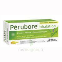 Perubore Caps Inhalation Par Vapeur Inhalation Plq/15 à BAR-SUR-SEINE