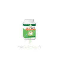 Audevard Hoof Biotine 1kg à BAR-SUR-SEINE