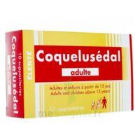 Coquelusedal Adultes, Suppositoire à BAR-SUR-SEINE