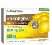 Arkoroyal Gelée Royale Bio 1500 Mg Solution Buvable 20 Ampoules/10ml à BAR-SUR-SEINE