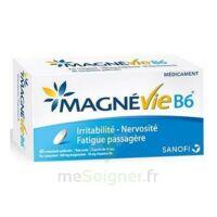 Magnevie B6 100 Mg/10 Mg Comprimés Pelliculés Plaq/60 à BAR-SUR-SEINE