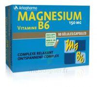 Arkovital Magnésium Vitamine B6 Gélules B/120 à BAR-SUR-SEINE