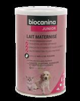 Biocanina Lait Poudre Maternisé B/400g à BAR-SUR-SEINE