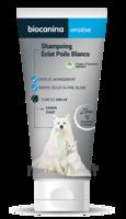 Biocanina Shampooing éclat Poils Blancs 200ml à BAR-SUR-SEINE