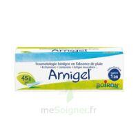Boiron Arnigel Gel T(alumino-plastique)/45g à BAR-SUR-SEINE