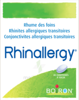 Boiron Rhinallergy Comprimés B/40 à BAR-SUR-SEINE