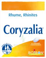 Boiron Coryzalia Comprimés Orodispersibles à BAR-SUR-SEINE