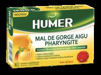 Humer Pharyngite Past Mal De Gorge Baies Sauvages à BAR-SUR-SEINE